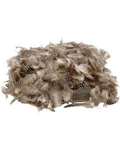 Guinea fowl feathers, 50 g/ 1 pack