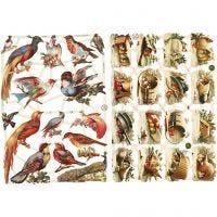 Vintage Die-Cuts, birds, 16,5x23,5 cm, 2 sheet/ 1 pack
