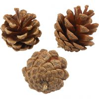 Pine Cones, D: 40 mm, 200 g/ 1 pack