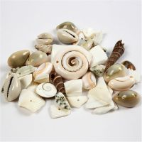 Beach Shells, size 9-40 mm, hole size 1-1,5 mm, 120 g/ 1 pack