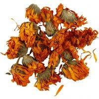 Dried flowers, Calendula, D: 1 - 1,5 cm, golden, 1 pack